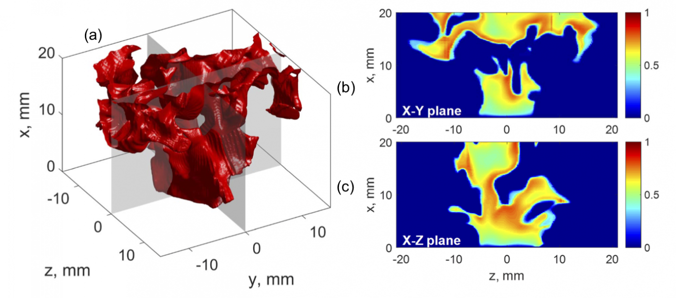 The mechanism leading to blowoff is examined using 3D computational data.